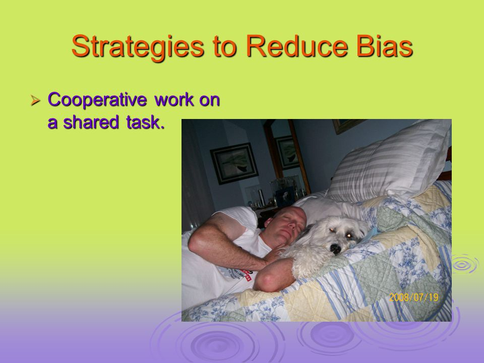 Strategies to Reduce Bias  Cooperative work on a shared task.