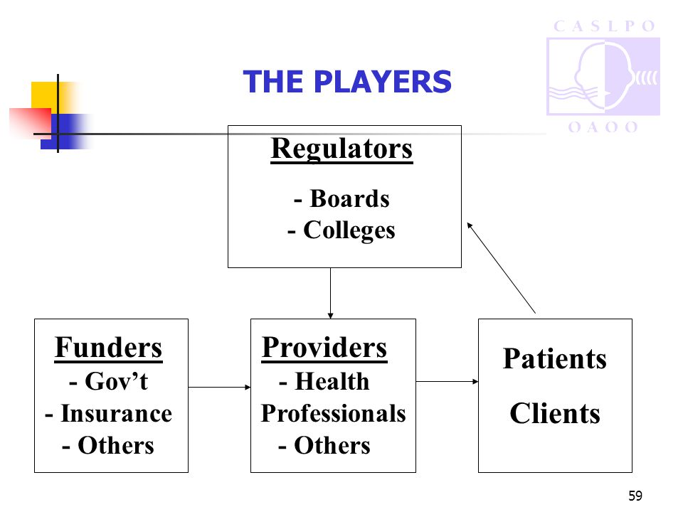 59 THE PLAYERS Regulators - Boards - Colleges Providers - Health Professionals - Others Patients Clients Funders - Gov't - Insurance - Others