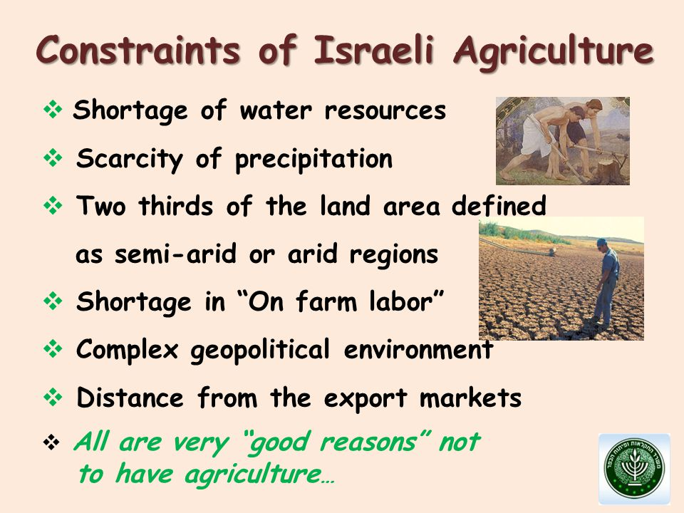  Shortage of water resources  Scarcity of precipitation  Two thirds of the land area defined as semi-arid or arid regions  Shortage in On farm labor  Complex geopolitical environment  Distance from the export markets Constraints of Israeli Agriculture  All are very good reasons not to have agriculture …