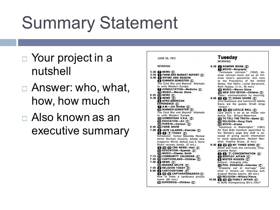 Summary Statement  Your project in a nutshell  Answer: who, what, how, how much  Also known as an executive summary