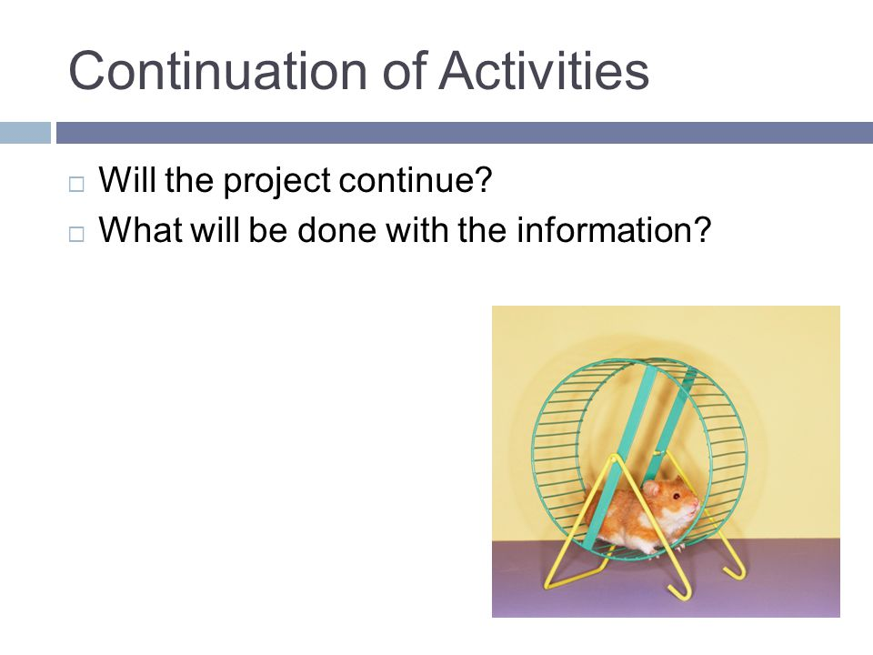 Continuation of Activities  Will the project continue?  What will be done with the information?