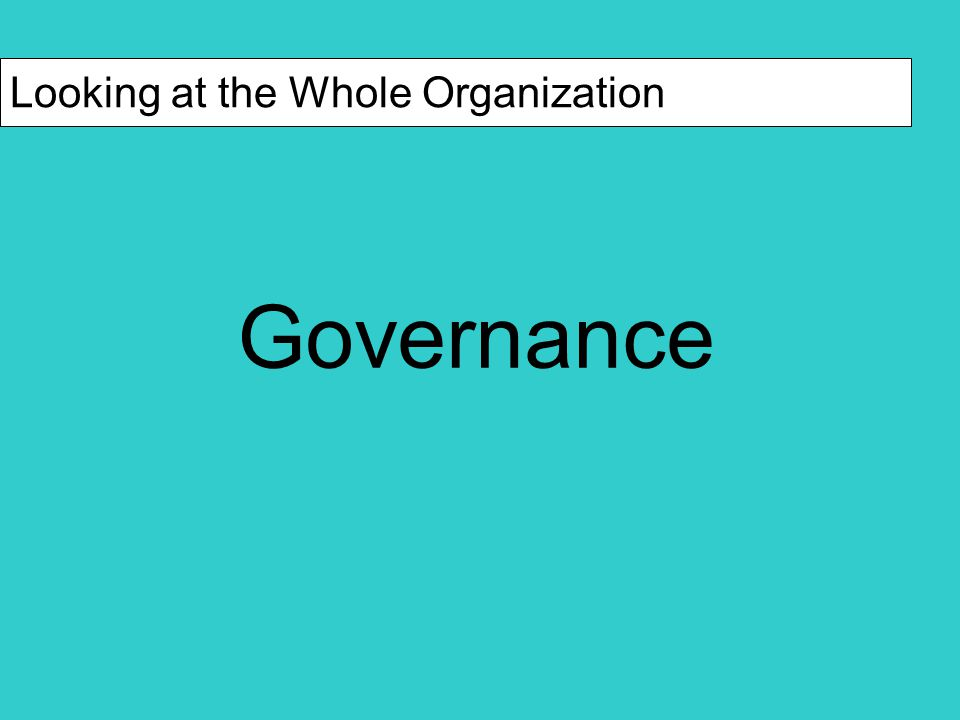 Components of a Good Board Governance Structure Should demonstrate indicators of organizational strength (choose those with which you are comfortable)  e.g., diverse, active, structured/organized Diversity indicators of board strength  age  race  gender  available professional expertise  appropriate board size