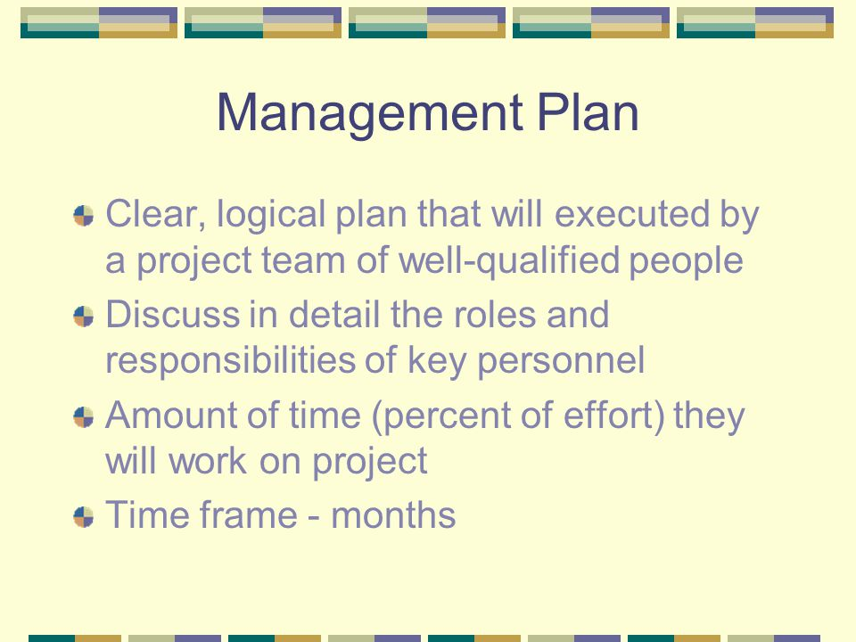 Management Plan Clear, logical plan that will executed by a project team of well-qualified people Discuss in detail the roles and responsibilities of