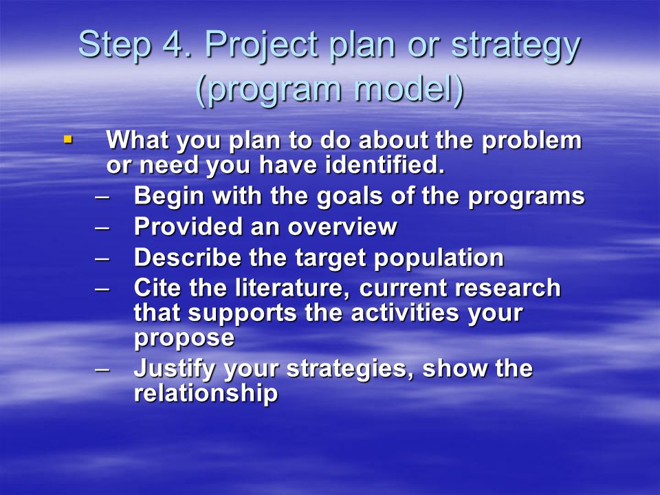  What you plan to do about the problem or need you have identified.