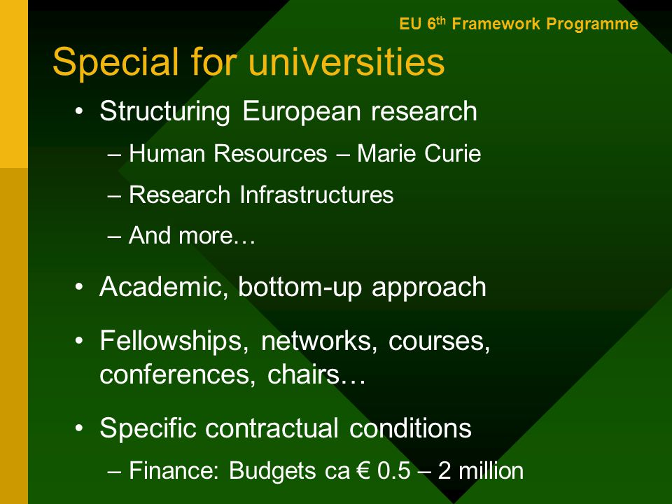 Special for universities Structuring European research –Human Resources – Marie Curie –Research Infrastructures –And more… Academic, bottom-up approach Fellowships, networks, courses, conferences, chairs… Specific contractual conditions –Finance: Budgets ca € 0.5 – 2 million EU 6 th Framework Programme