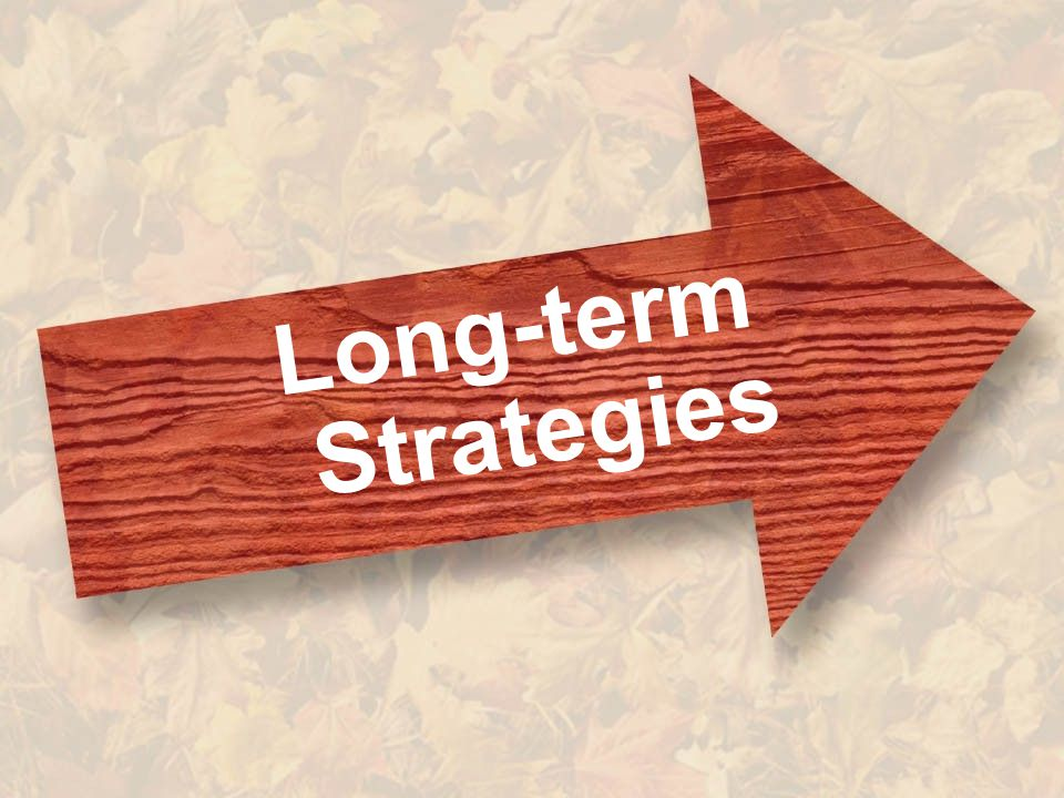 38 Long-term Strategies