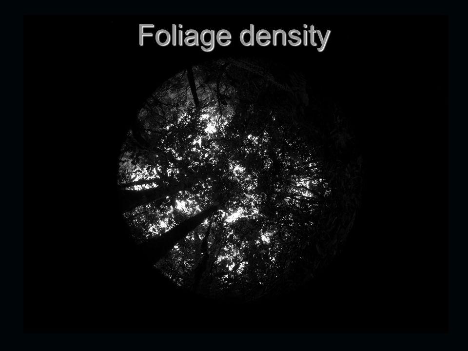 Foliage density
