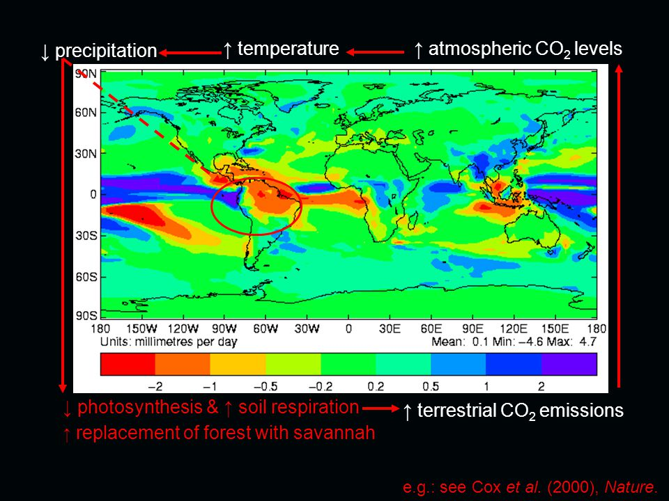 ↑ atmospheric CO 2 levels ↓ precipitation ↓ photosynthesis & ↑ soil respiration ↑ temperature ↑ terrestrial CO 2 emissions e.g.: see Cox et al.
