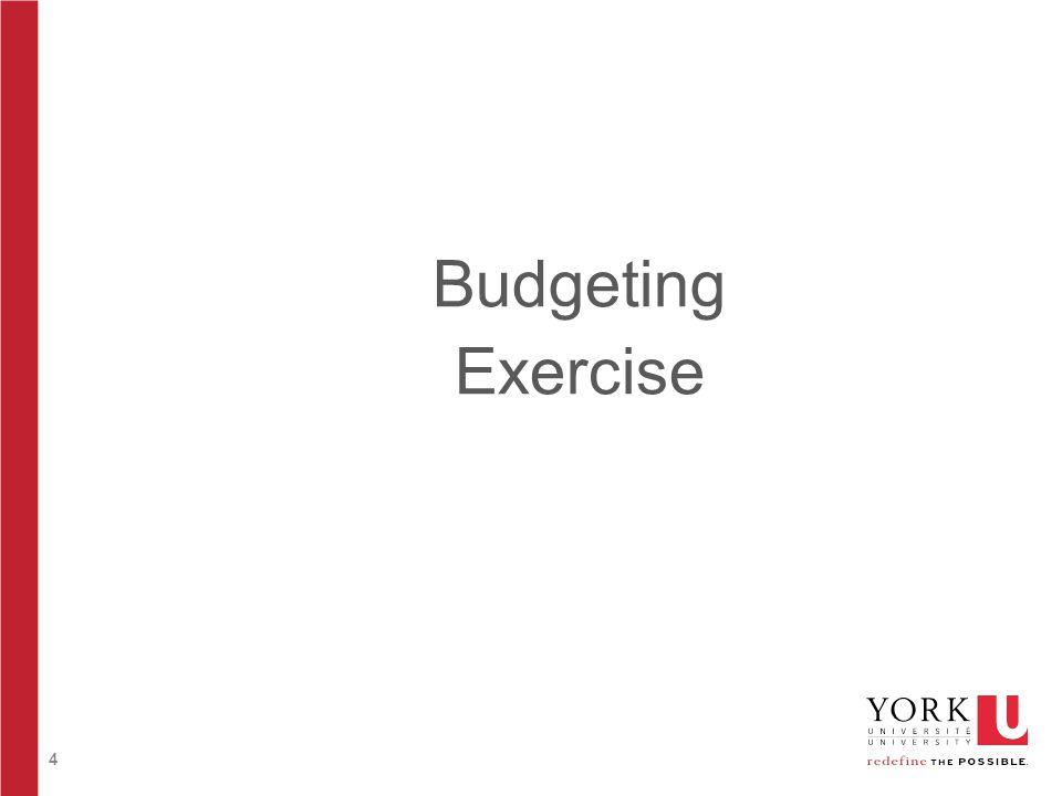 4 Budgeting Exercise