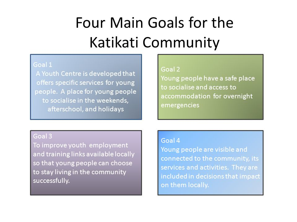 Goal 1 To develop a Youth Centre that offers specific services for youth.