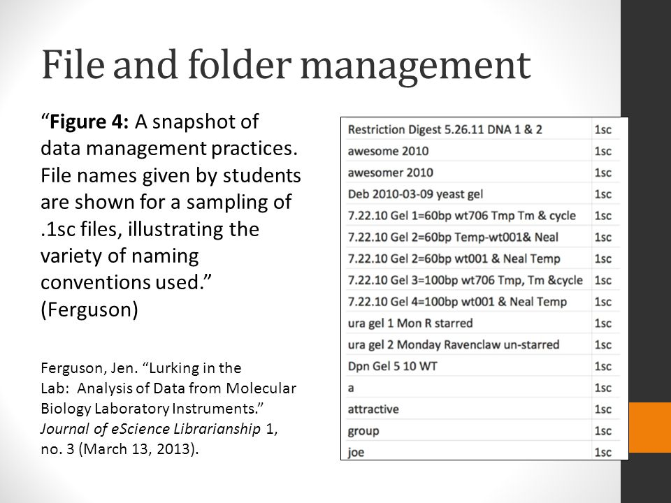 "File and folder management ""Figure 4: A snapshot of data management practices. File names given by students are shown for a sampling of.1sc files, ill"