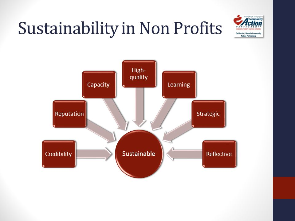 What is Sustainability Leadership Adaptability Program Capacity Sustainability