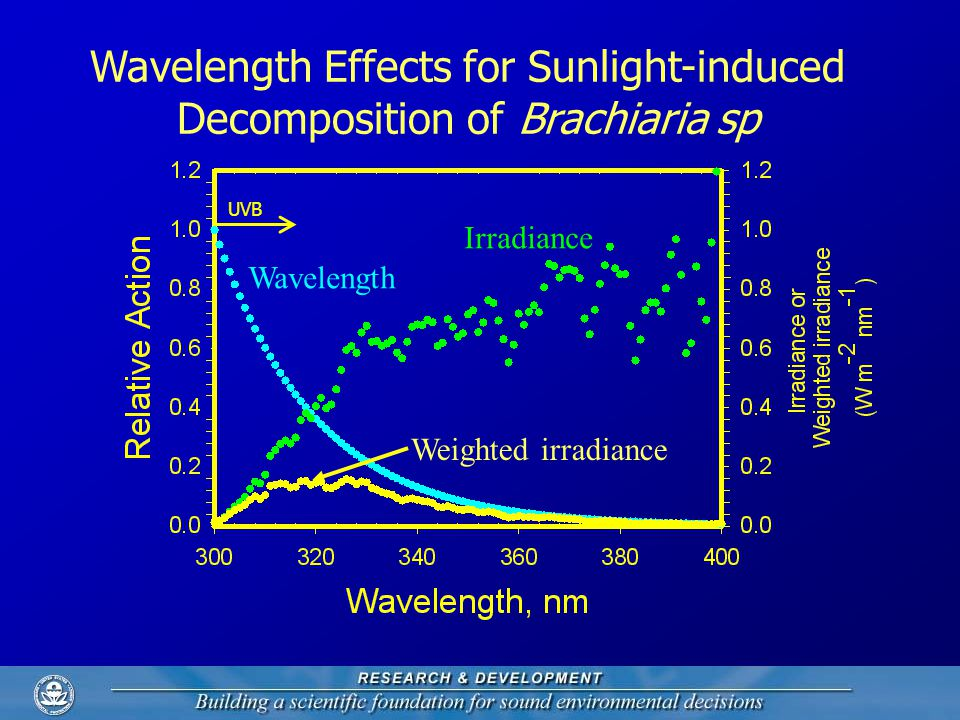 Wavelength Effects for Sunlight-induced Decomposition of Brachiaria sp UVB Irradiance Wavelength Weighted irradiance