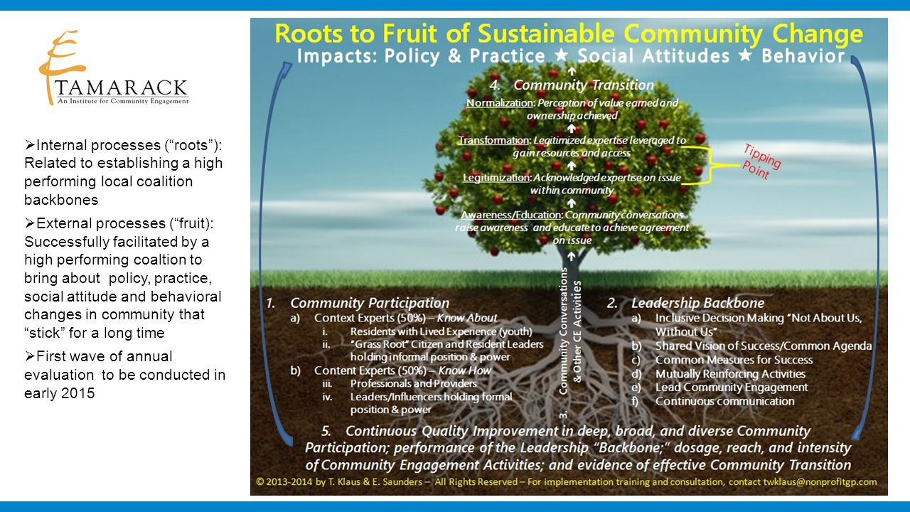  Internal processes ( roots ): Related to establishing a high performing local coalition backbones  External processes ( fruit): Successfully facilitated by a high performing coaltion to bring about policy, practice, social attitude and behavioral changes in community that stick for a long time  First wave of annual evaluation to be conducted in early 2015