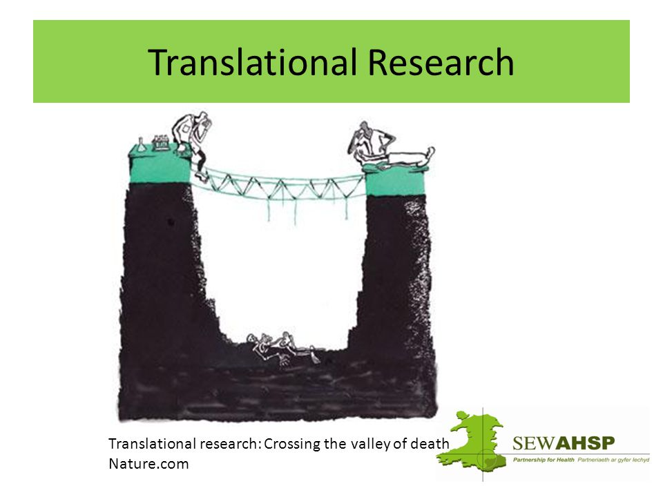 Translational Research Translational research: Crossing the valley of death Nature.com