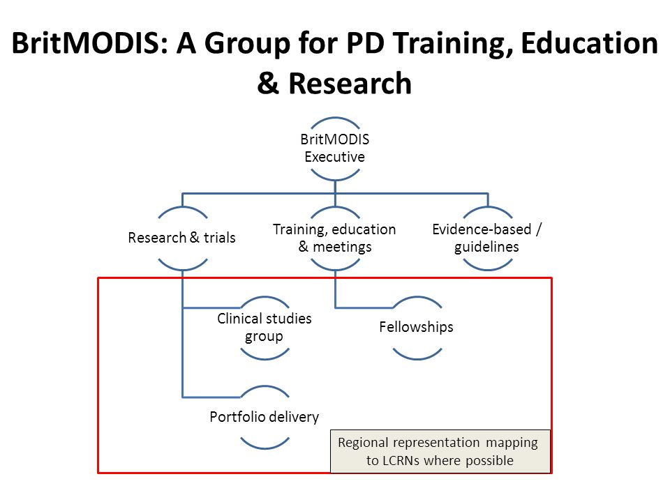 BritMODIS: A Group for PD Training, Education & Research BritMODIS Executive Research & trials Clinical studies group Portfolio delivery Training, edu