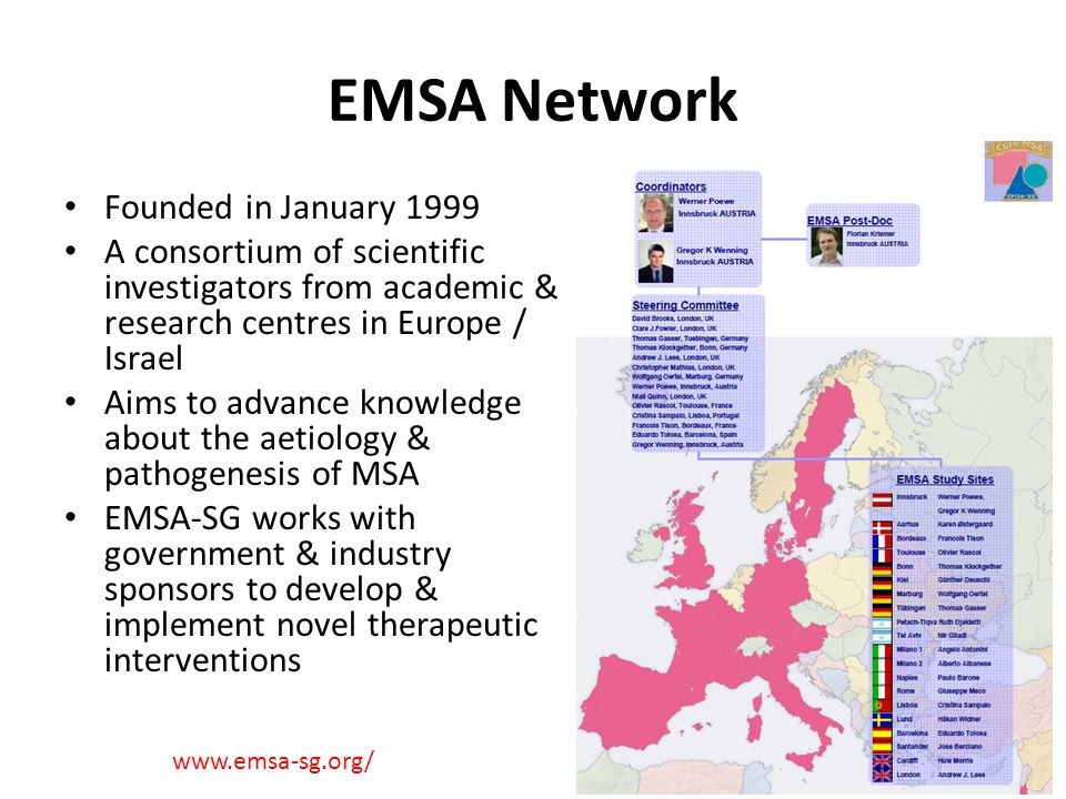 EMSA Network Founded in January 1999 A consortium of scientific investigators from academic & research centres in Europe / Israel Aims to advance know