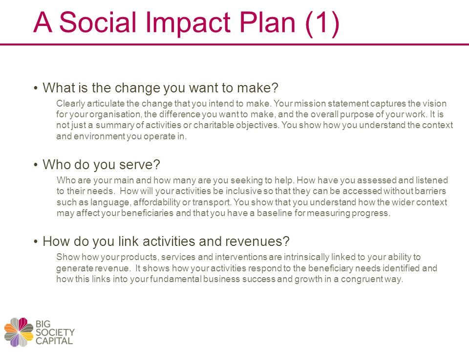 A Social Impact Plan (1) What is the change you want to make.