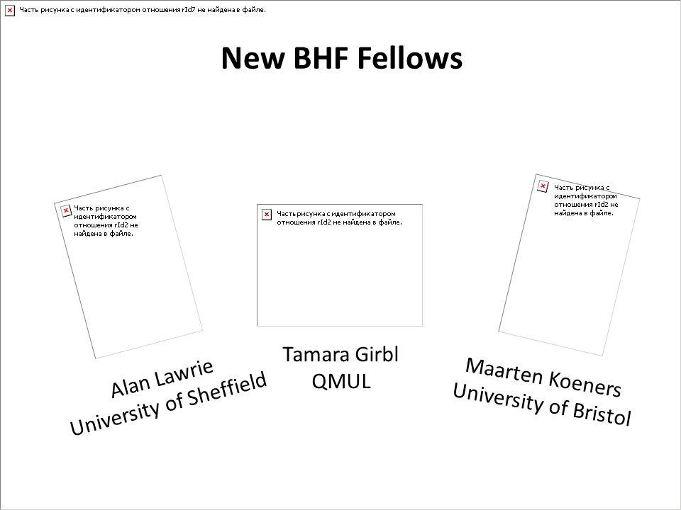 New BHF Fellows Alan Lawrie University of Sheffield Tamara Girbl QMUL Maarten Koeners University of Bristol