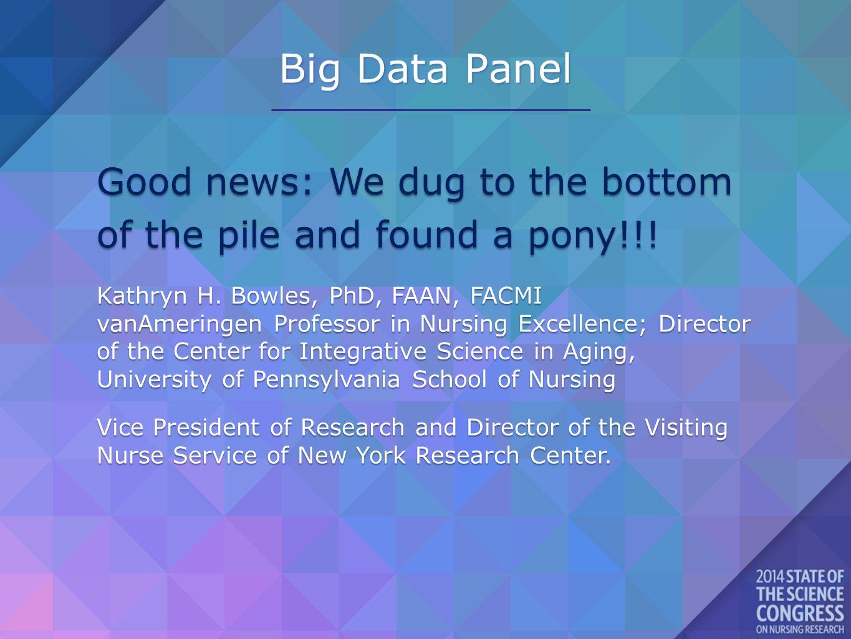 Big Data Panel Good news: We dug to the bottom of the pile and found a pony!!.