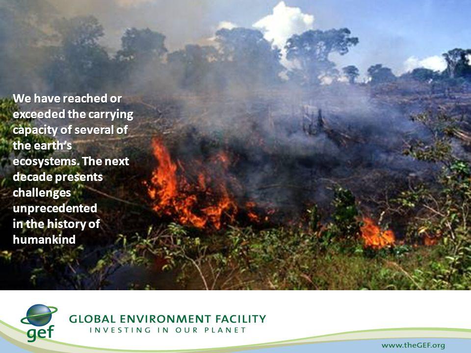 GEF Funding by Environmental Focal Area