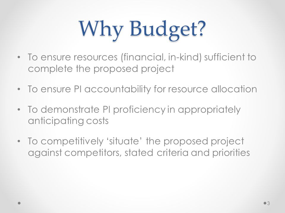 Budget Role in the Proposal.