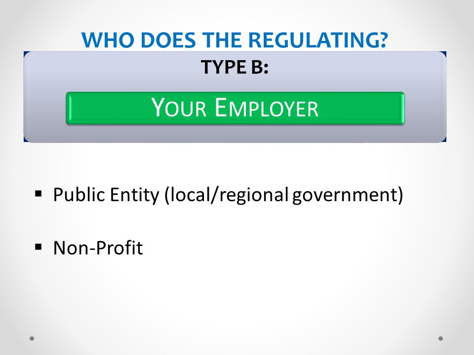 WHO DOES THE REGULATING? TYPE B: Y OUR E MPLOYER  Public Entity (local/regional government)  Non-Profit