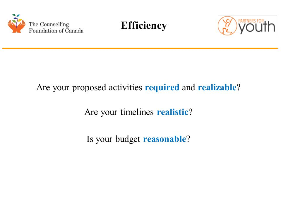 Efficiency Are your proposed activities required and realizable? Are your timelines realistic? Is your budget reasonable?