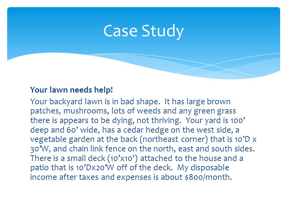 Case Study Your lawn needs help. Your backyard lawn is in bad shape.