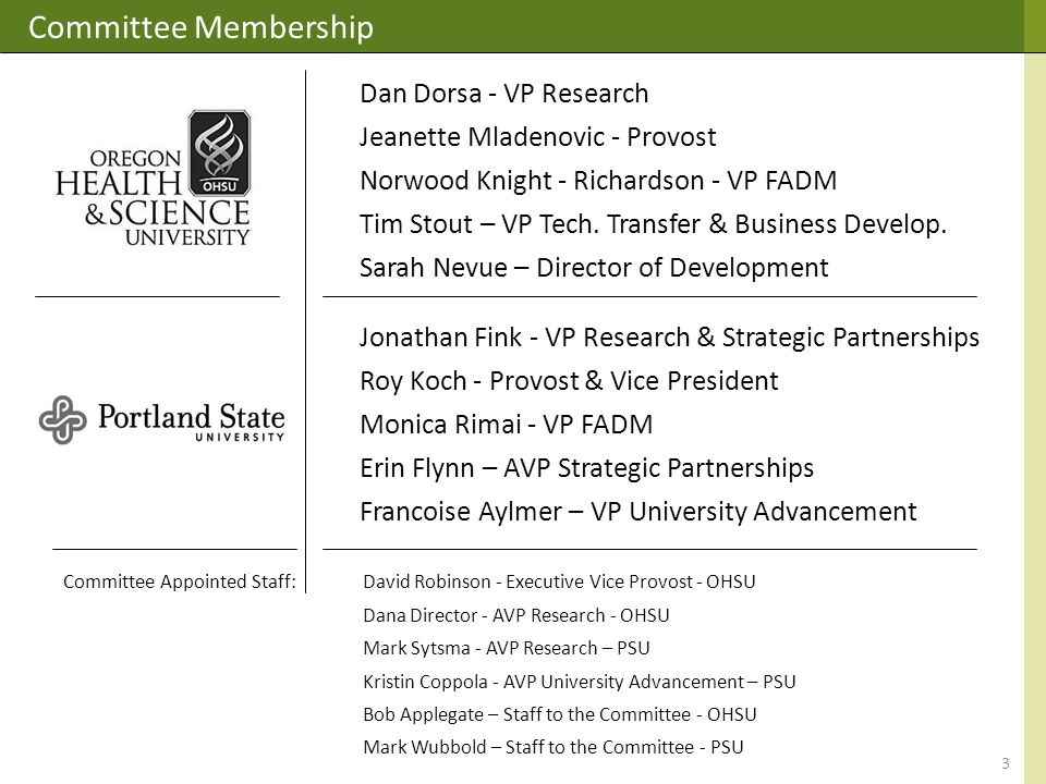 Committee Membership Dan Dorsa - VP Research Jeanette Mladenovic - Provost Norwood Knight - Richardson - VP FADM Tim Stout – VP Tech.