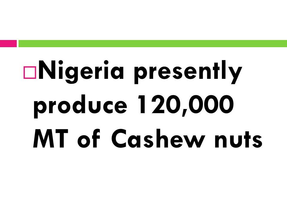  Nigeria presently produce 120,000 MT of Cashew nuts