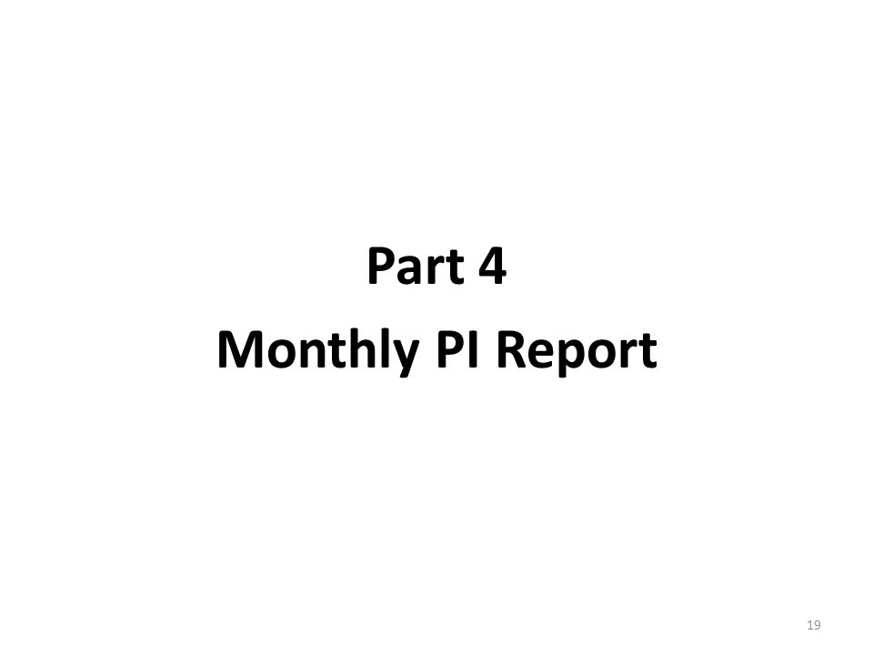 Part 4 Monthly PI Report 19