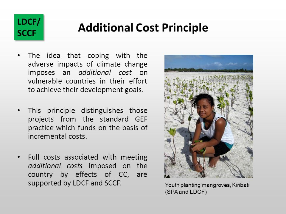 Additional Cost Principle The idea that coping with the adverse impacts of climate change imposes an additional cost on vulnerable countries in their effort to achieve their development goals.