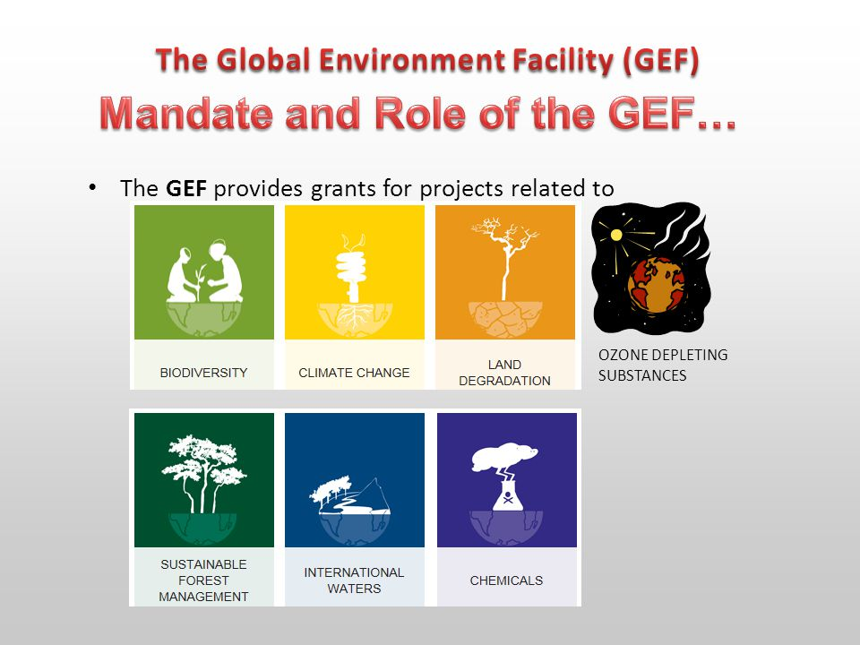 The GEF provides grants for projects related to OZONE DEPLETING SUBSTANCES
