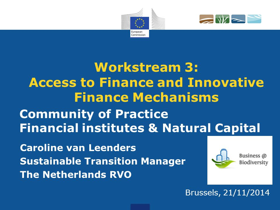 Workstream 3: Access to Finance and Innovative Finance Mechanisms Caroline van Leenders Sustainable Transition Manager The Netherlands RVO Brussels, 2