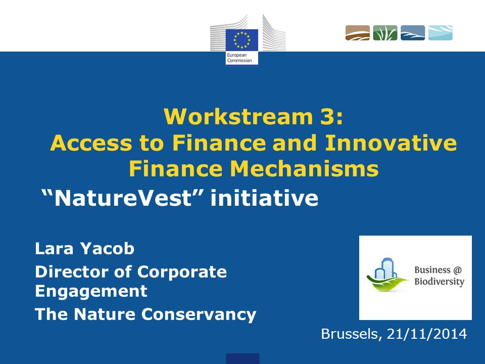 Workstream 3: Access to Finance and Innovative Finance Mechanisms Lara Yacob Director of Corporate Engagement The Nature Conservancy Brussels, 21/11/2014 NatureVest initiative
