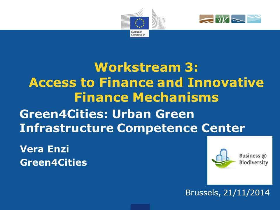 Workstream 3: Access to Finance and Innovative Finance Mechanisms Vera Enzi Green4Cities Brussels, 21/11/2014 Green4Cities: Urban Green Infrastructure Competence Center Rob Wolters, Chief Executive ECNC Land & Sea Group