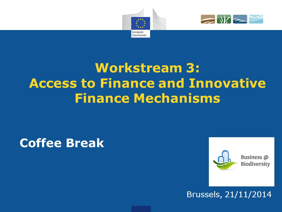 Workstream 3: Access to Finance and Innovative Finance Mechanisms Brussels, 21/11/2014 Coffee Break