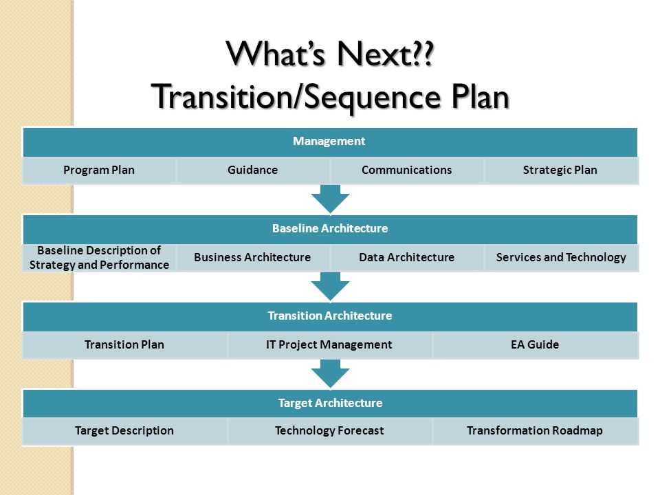 Target Architecture Target DescriptionTechnology ForecastTransformation Roadmap Transition Architecture Transition PlanIT Project ManagementEA Guide Baseline Architecture Baseline Description of Strategy and Performance Business ArchitectureData ArchitectureServices and Technology Management Program PlanGuidanceCommunicationsStrategic Plan What's Next .