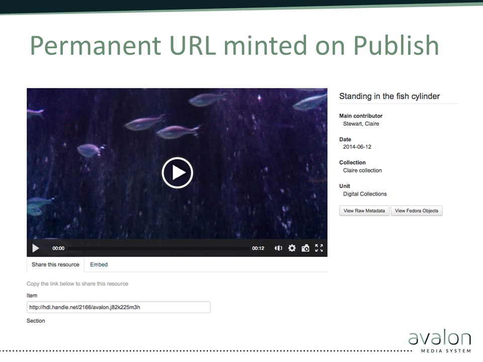 Permanent URL minted on Publish