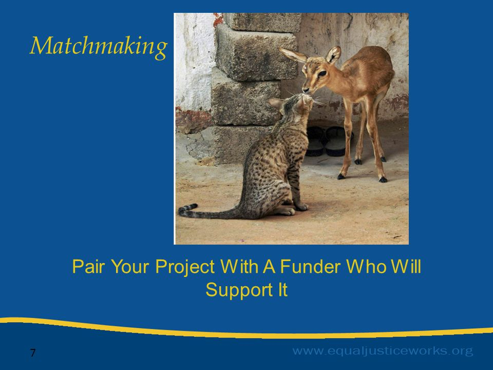 7 Pair Your Project With A Funder Who Will Support It Matchmaking