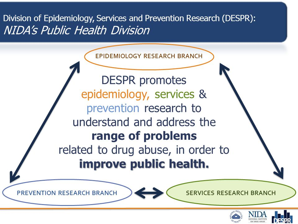 SERVICES RESEARCH BRANCHPREVENTION RESEARCH BRANCH EPIDEMIOLOGY RESEARCH BRANCH Division of Epidemiology, Services and Prevention Research (DESPR): NI