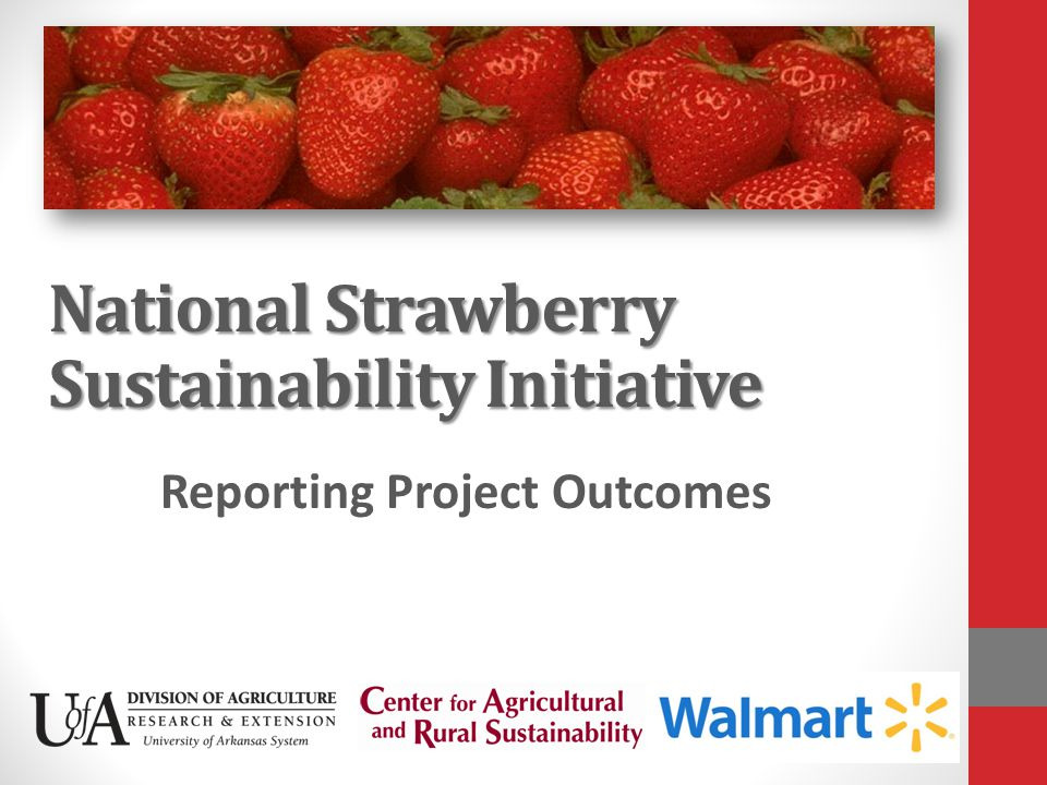 National Strawberry Sustainability Initiative Reporting Project Outcomes