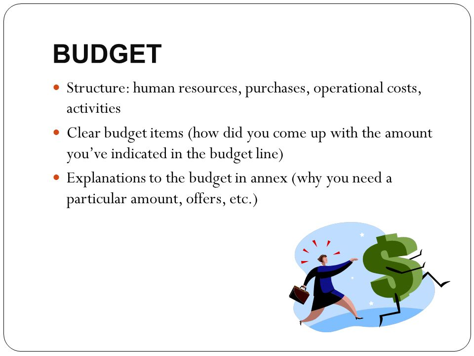 BUDGET Structure: human resources, purchases, operational costs, activities Clear budget items (how did you come up with the amount you've indicated i