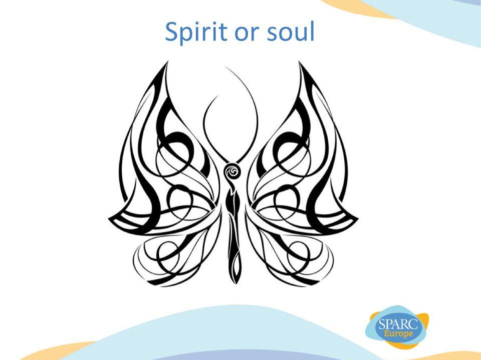 Spirit or soul