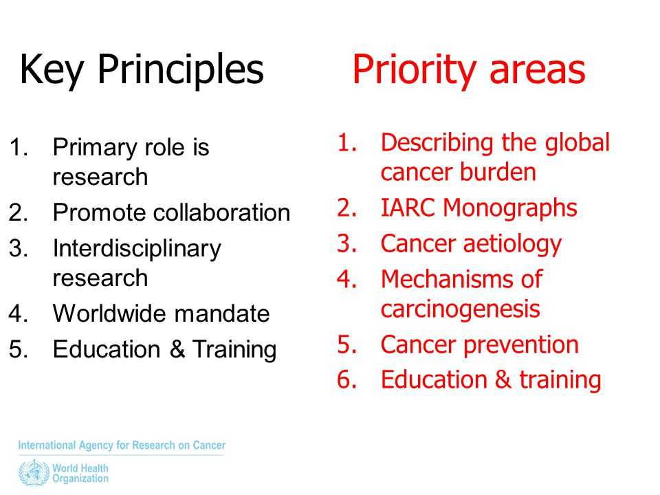 Key Principles Priority areas 1.Describing the global cancer burden 2.IARC Monographs 3.Cancer aetiology 4.Mechanisms of carcinogenesis 5.Cancer preve