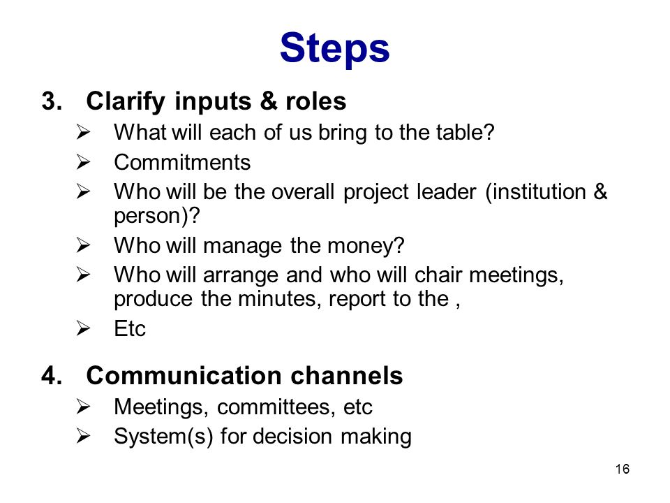 16 Steps 3.Clarify inputs & roles  What will each of us bring to the table?  Commitments  Who will be the overall project leader (institution & per