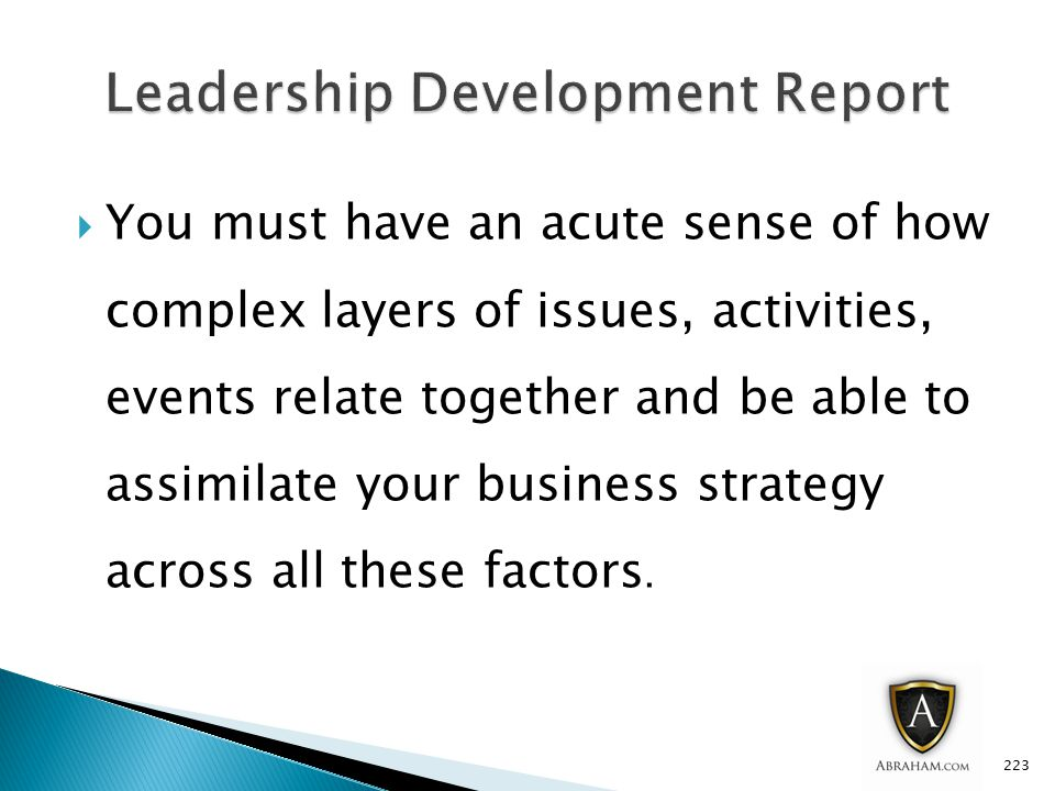  You must have an acute sense of how complex layers of issues, activities, events relate together and be able to assimilate your business strategy across all these factors.