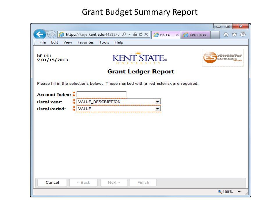 Grant Budget Summary Report