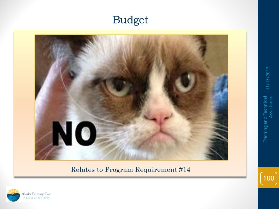 Budget 11/18/2013 Training and Technical Assistance 99 Relates to Program Requirement #14 It's MY Budget. I can buy what I want. Right? It's MY Budget